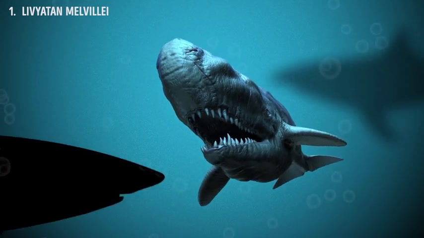 Most Dangerous Megalodon Enemies